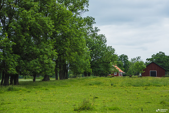Swedish landscape in Kålandsö